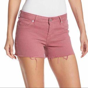 NWT! Hudson Jeans: Amber Fray Hem Denim Shorts